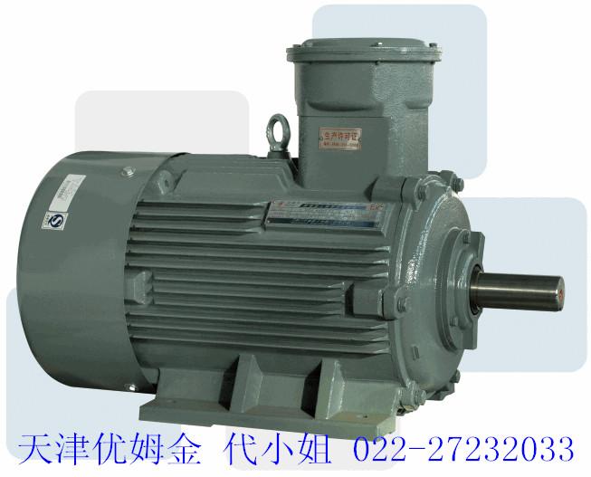 YVF2变频电机.jpg