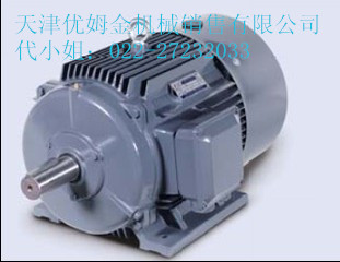 西门子贝得1TL0001系列节能电机